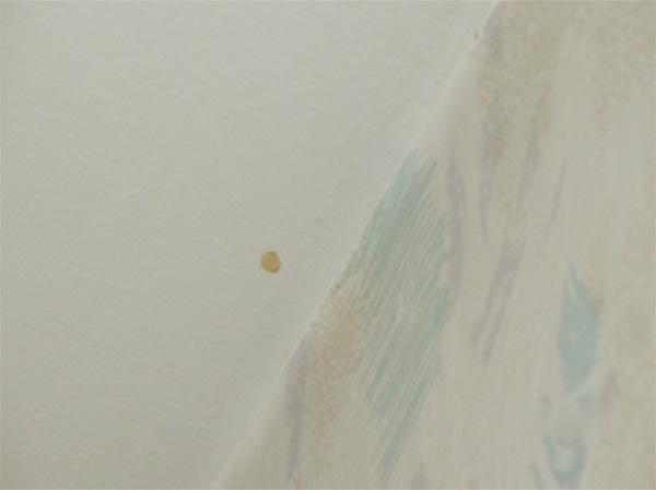Следы ржавчины на потолке