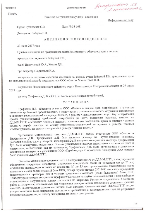 Решение по делу Дениса Трофимова
